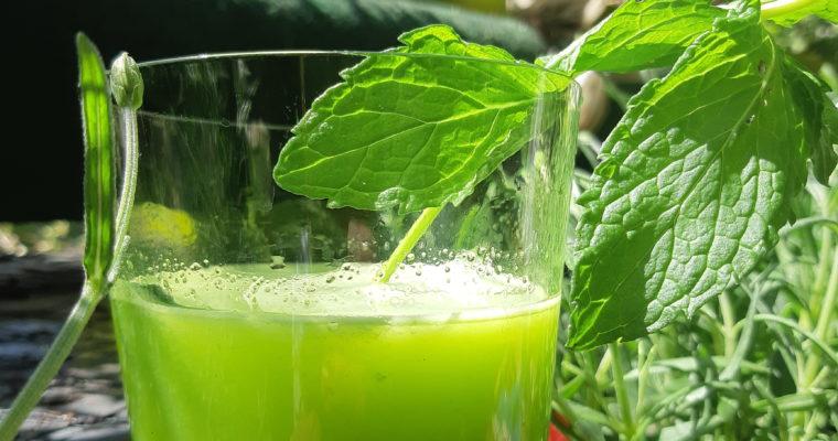 Grüner Saft, einfach und gut mit Stangensellerie